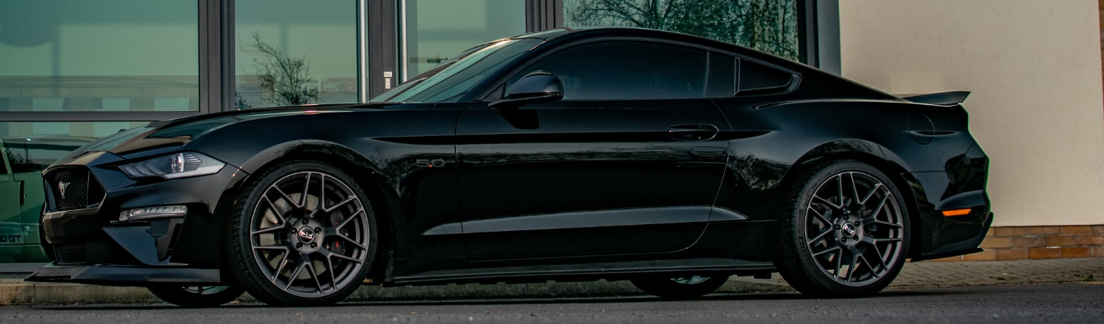 Mustang Specialist